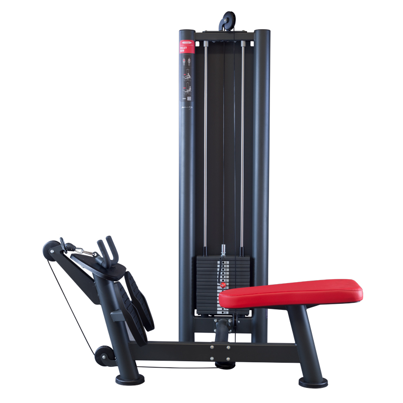 Panatta SEC Pulley Row