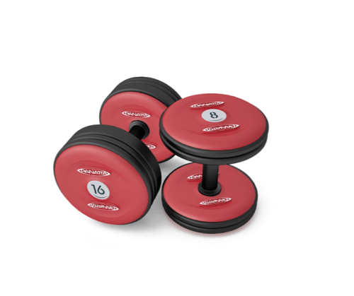 Panatta dumbbells full red