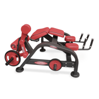 Panatta Freeweight HP Leg Curling