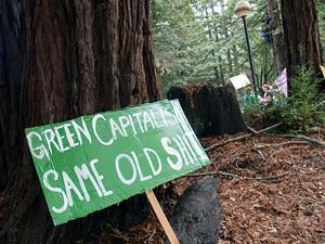 πράσινος καπιταλισμός