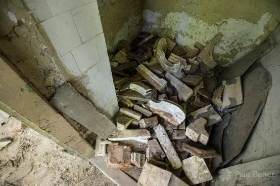 Das Schloss von Banloc, das darauf wartet wieder entdeckt zu werden