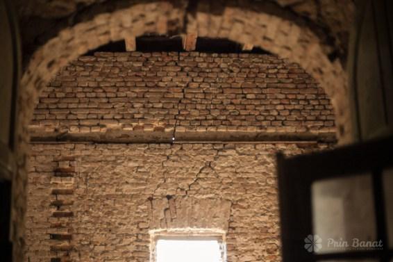 Castelul Contelui de Mercy din Carani