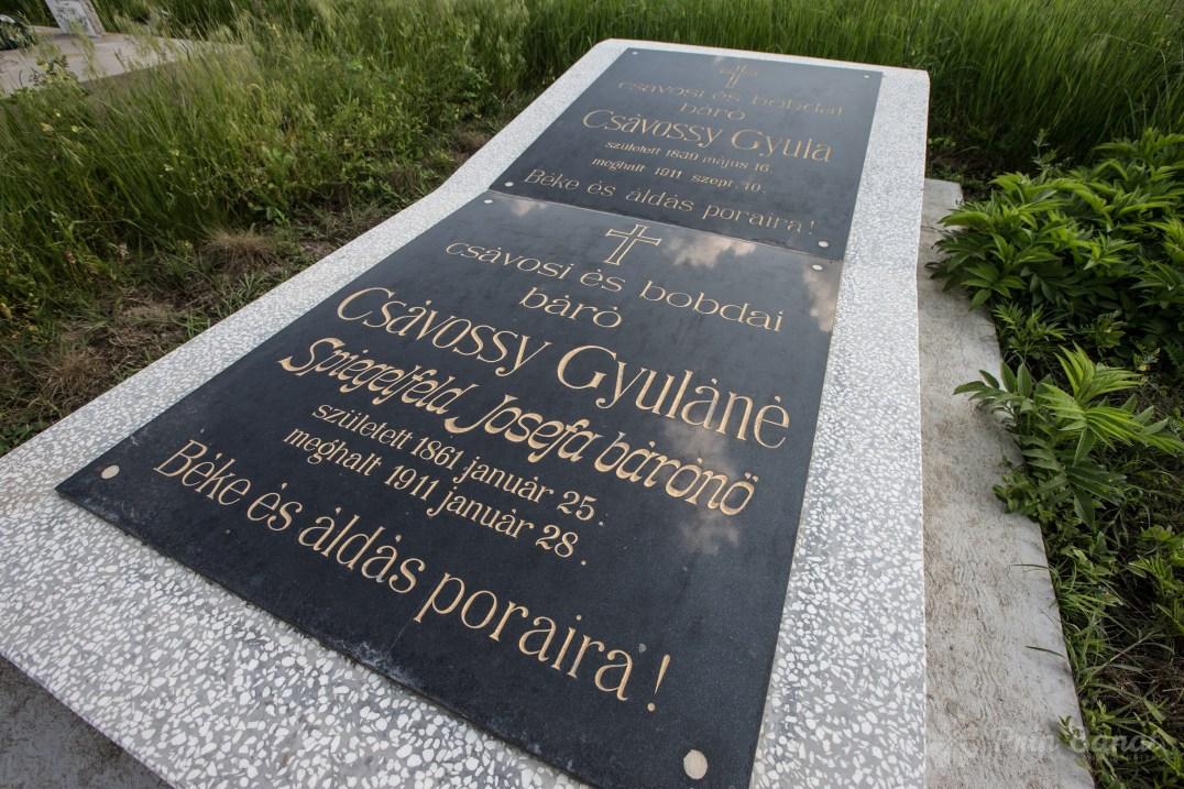 Csavossy's grave