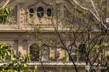Palatul Neptun din Timişoara