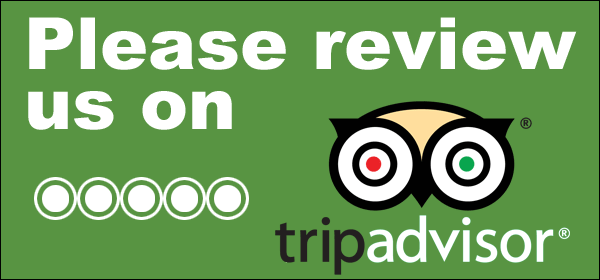review-us-on-tripadvisor