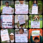 Pledge - Say No To Crackers