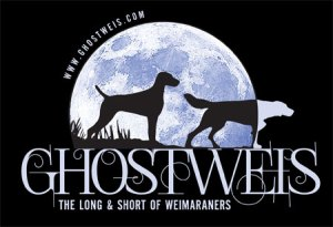 Ghostweis - The Long & Short Of Weimaraners
