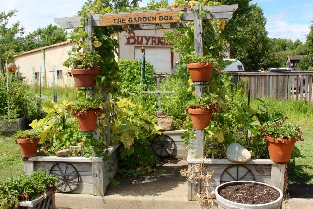 The Garden Box specializes in building custom raised garden beds, and it even offers classes on sustaining container gardens and gardening in small spaces, among other topics. [John-Henry Doucette]
