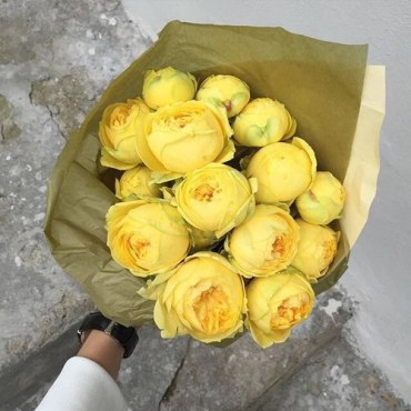 Peonies yellow