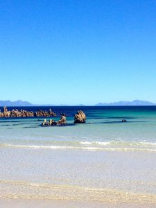 Pringle Bay's stunning beach | November travel blog update