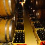 Walls of wine | wine tasting