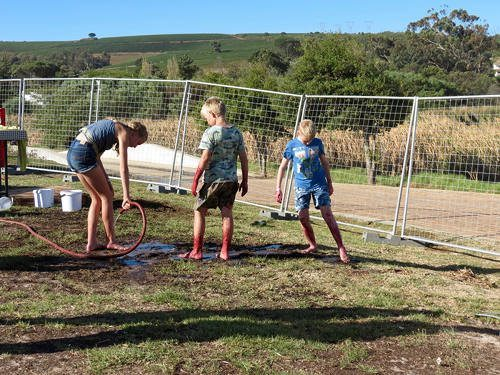 The messy effects of grape stomping require hosing away! | wine tasting festival