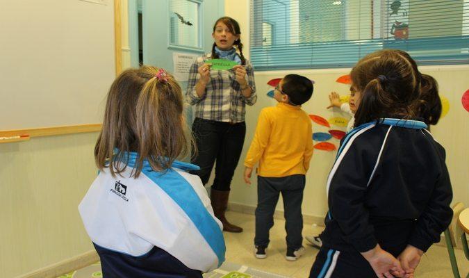 Cat in action in class   teaching overseas