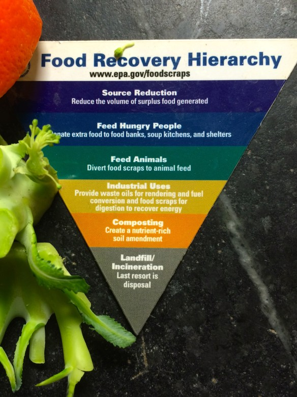 Food Recovery Hierarchy IMG_8668