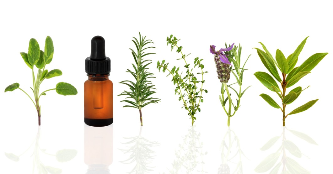 Image result for essential oil workshop