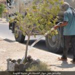 Zalivaju biljke tokom bombardovanja