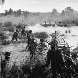 Borci Vijetkonga prave zasedu Amerikancima. Američka jedinica je napadnuta frontalno i sa boka, i vrlo brzo je zbrisana.
