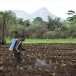 Francuska i Švajcarska izvoze pesticide zabranjene na njihovom tlu nerazvijenim zemljama