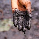 Nejednaka ekološka razmena i Novi zeleni dil