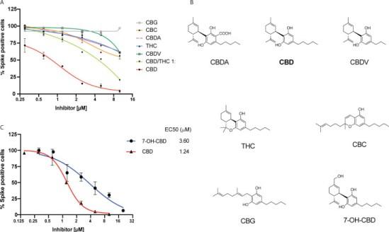 Cannabidiol Inhibits SARS-CoV-2 Replication and Promotes Immune Response Figure-2
