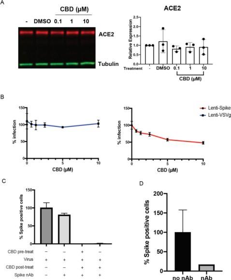 Cannabidiol Inhibits SARS-CoV-2 Replication and Promotes Immune Response Figure-3