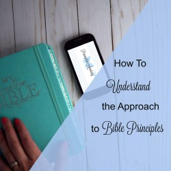 Principled Academy, The Principled Academy, Principle Approach, Principle Approach Method, Bible Principles, Classical Education, Classical Biblical Education, Hebrew Education, Homeschooling Torah, Homeschooling Bible, Homeschooling Scripture
