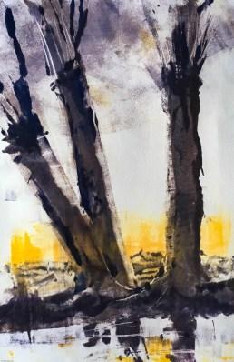 Willows 2 Dawn