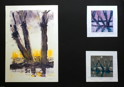 Supporting Studies Sheet 3:  Willows 1