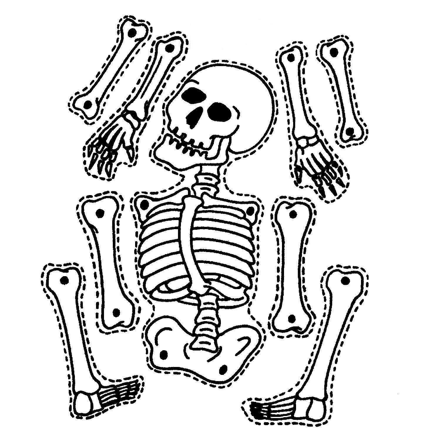 Printable Skeleton Puzzle