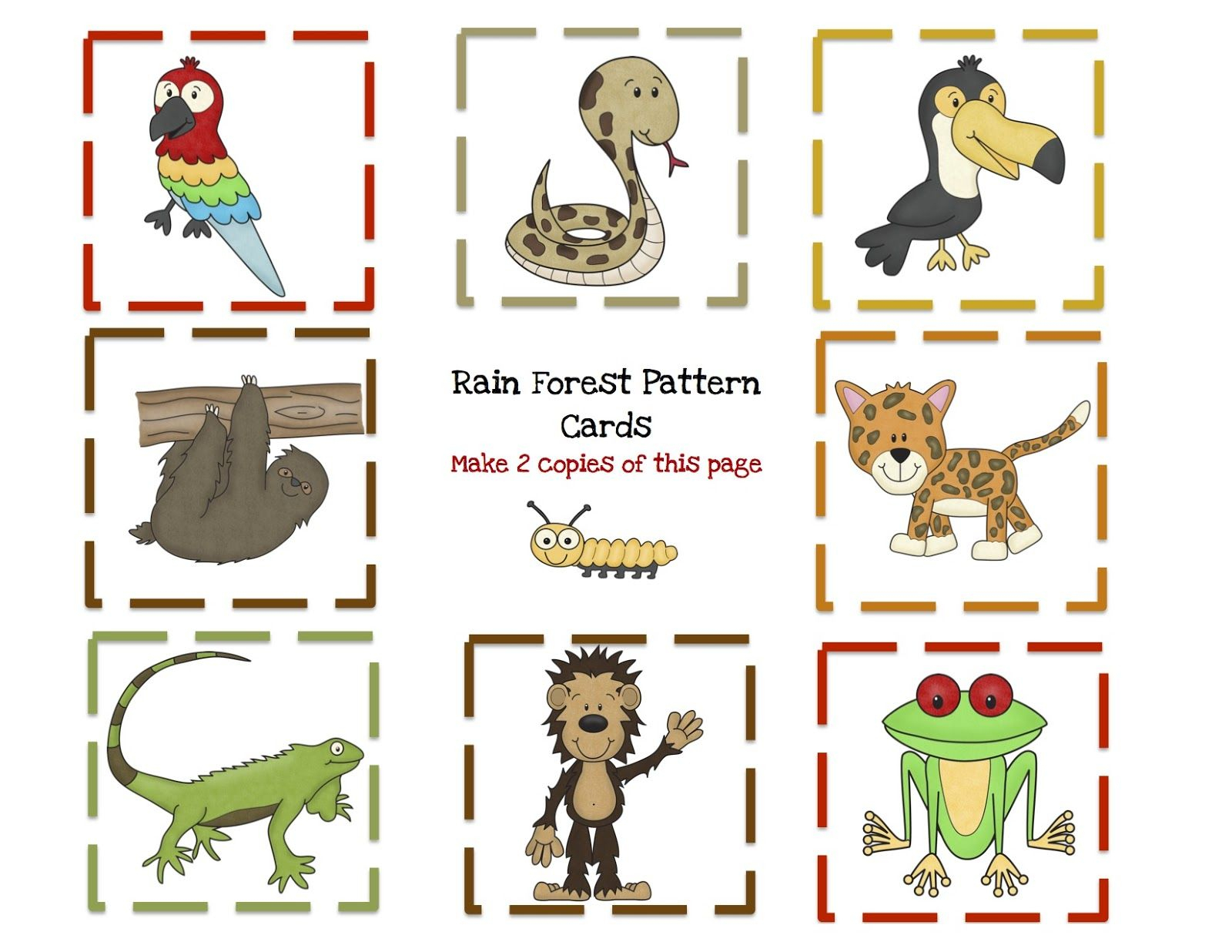 Rainforest Printable Worksheets