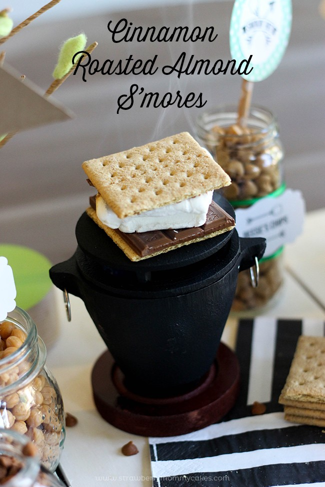 S'mores Summer Camping Party-12
