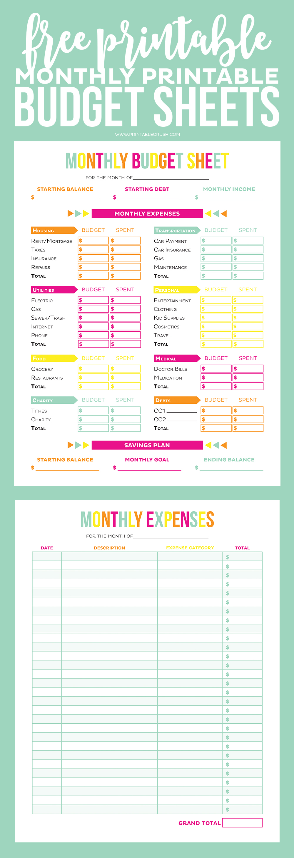 Budget sheet and expense sheet against teal background