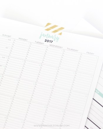 This is THE MOST functional Printable Calendar! It includes room for tasks, notes, plus a whole page for monthly goal tracking.
