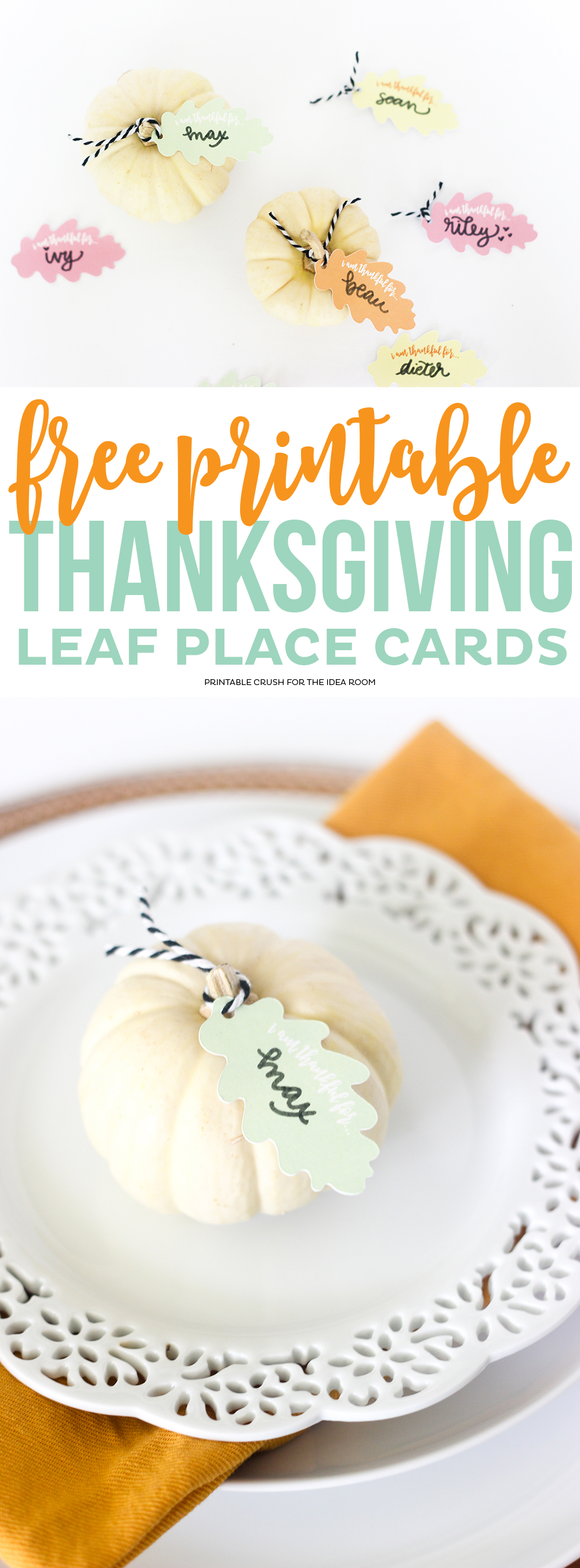 Download these pretty FREE Thanksgiving Place Card Printables to create a beautiful place setting for your guests! Includes the PDF and cut files. via @printablecrush
