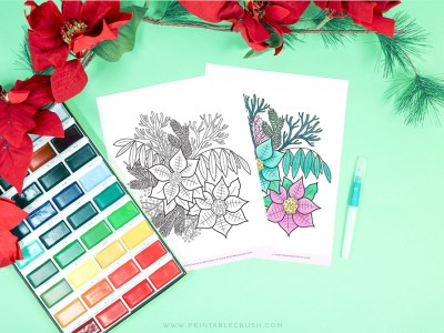 Free Poinsettia Coloring Page - Poinsettia Floral Coloring Page - Free Winter Coloring Page - Printable Crush