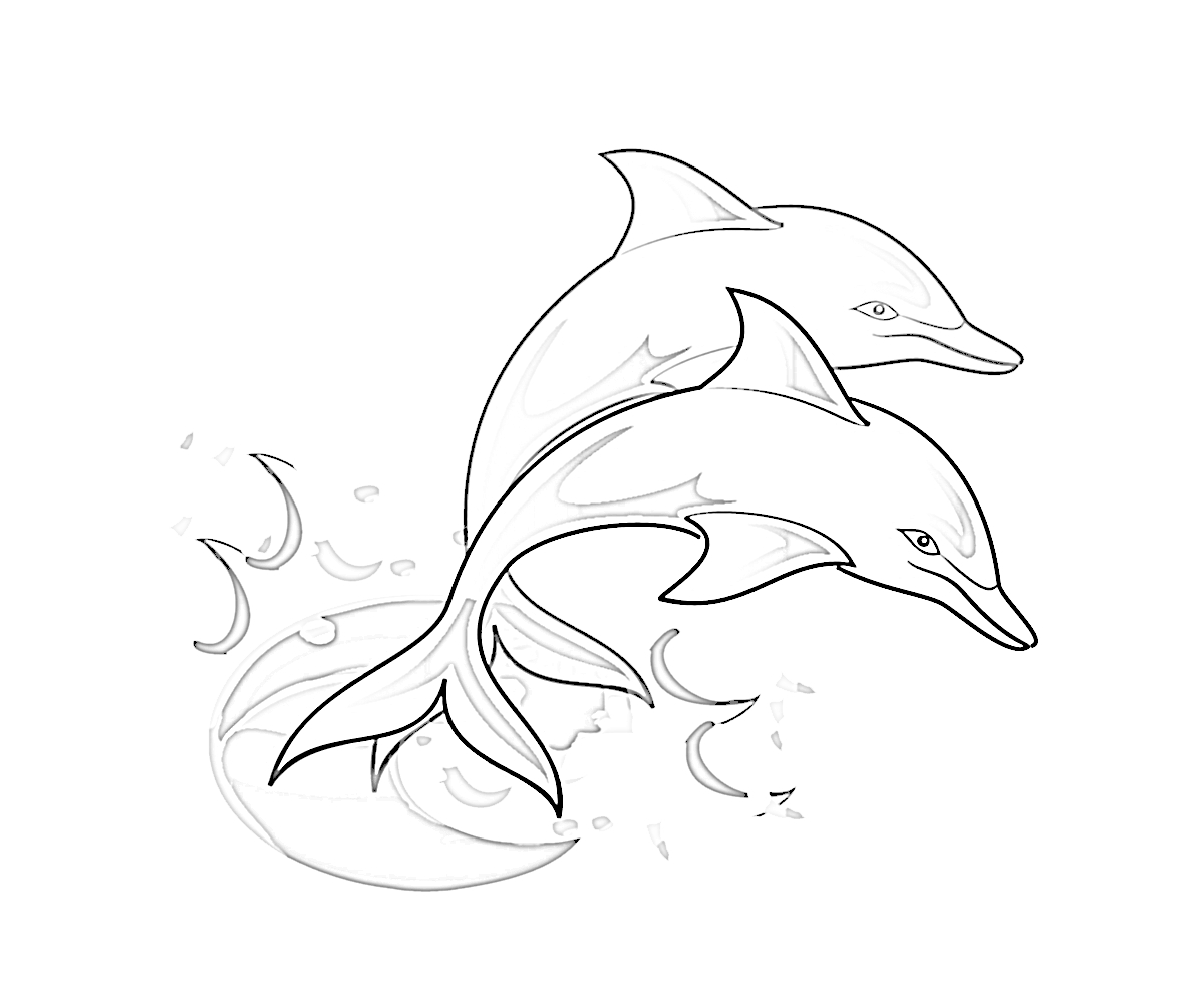 Dolphin 24 Animals Printable Coloring Pages