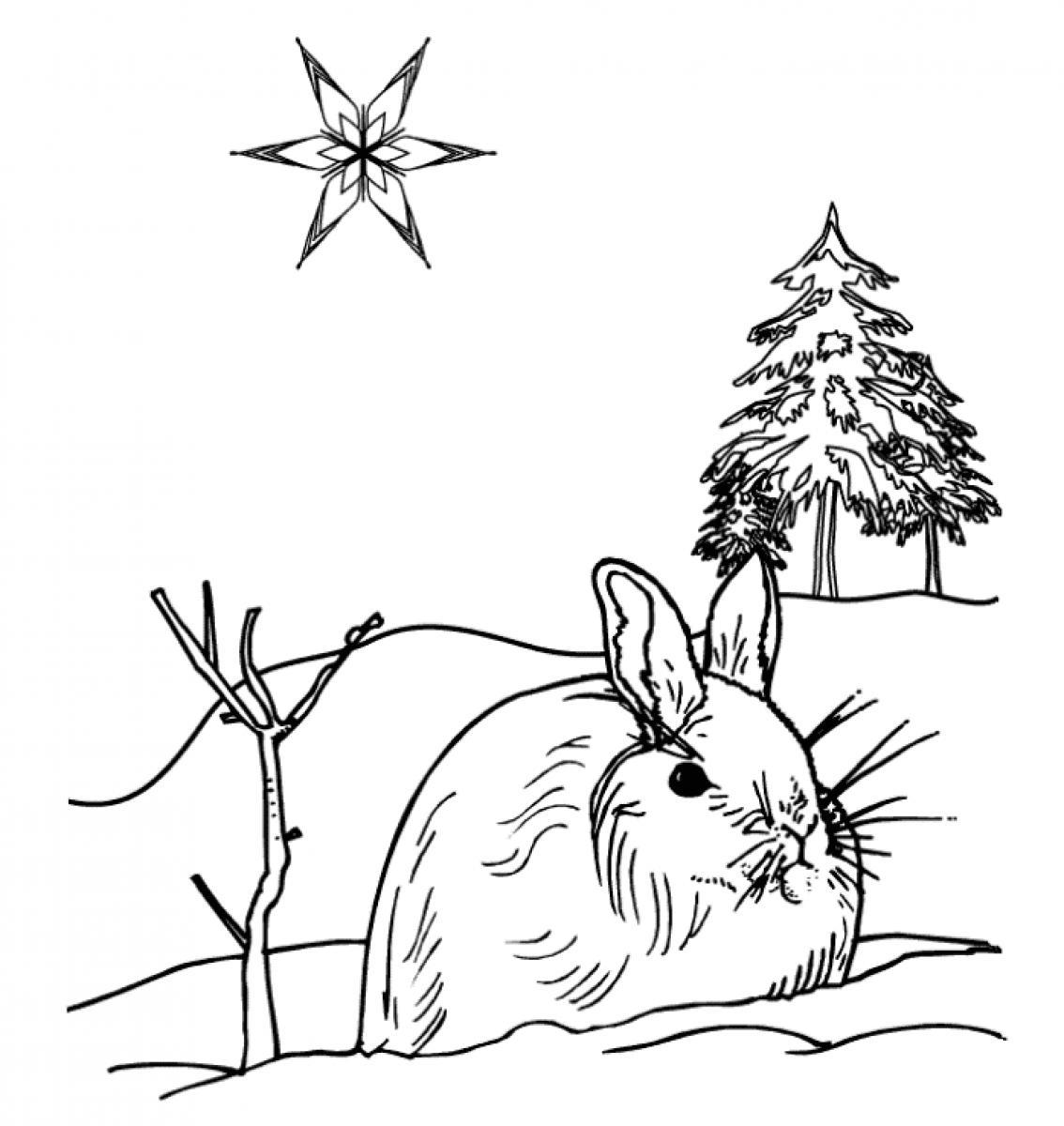 Winter Season Nature Printable Coloring Pages