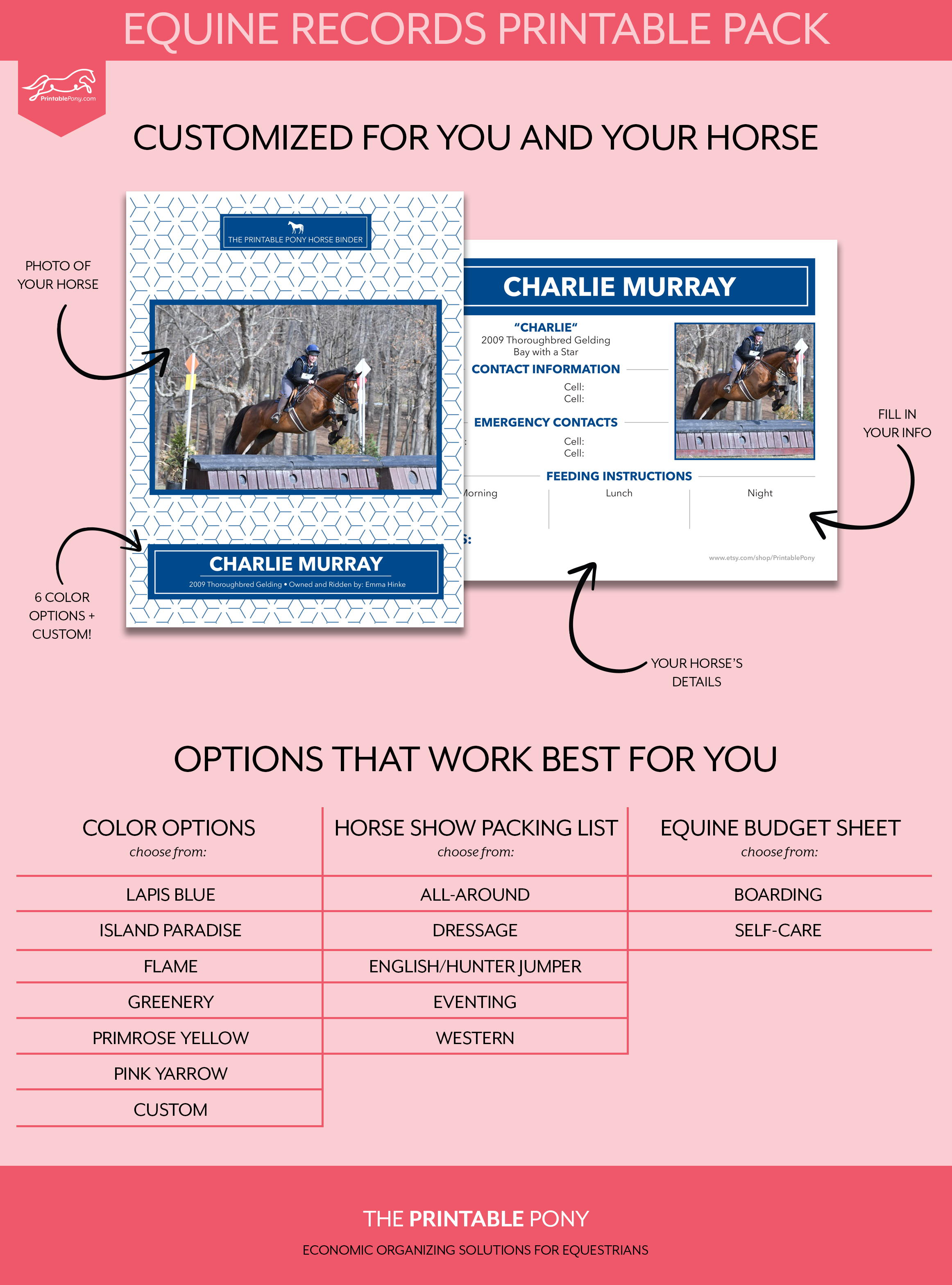 Equine Records Printable Pack