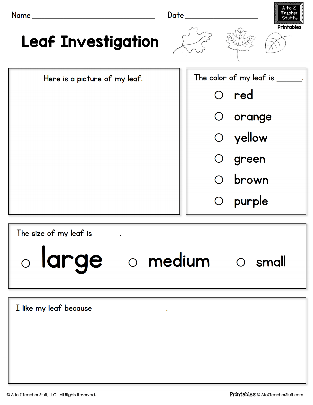 Leaf Investigation Printable Worksheet