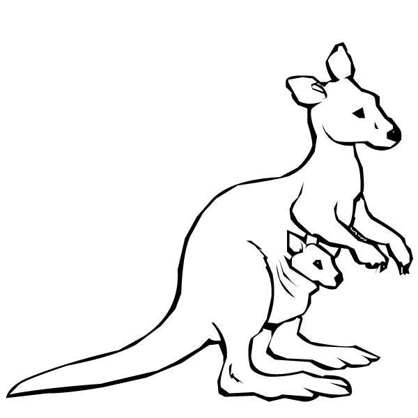 kangaroo coloring pages # 6