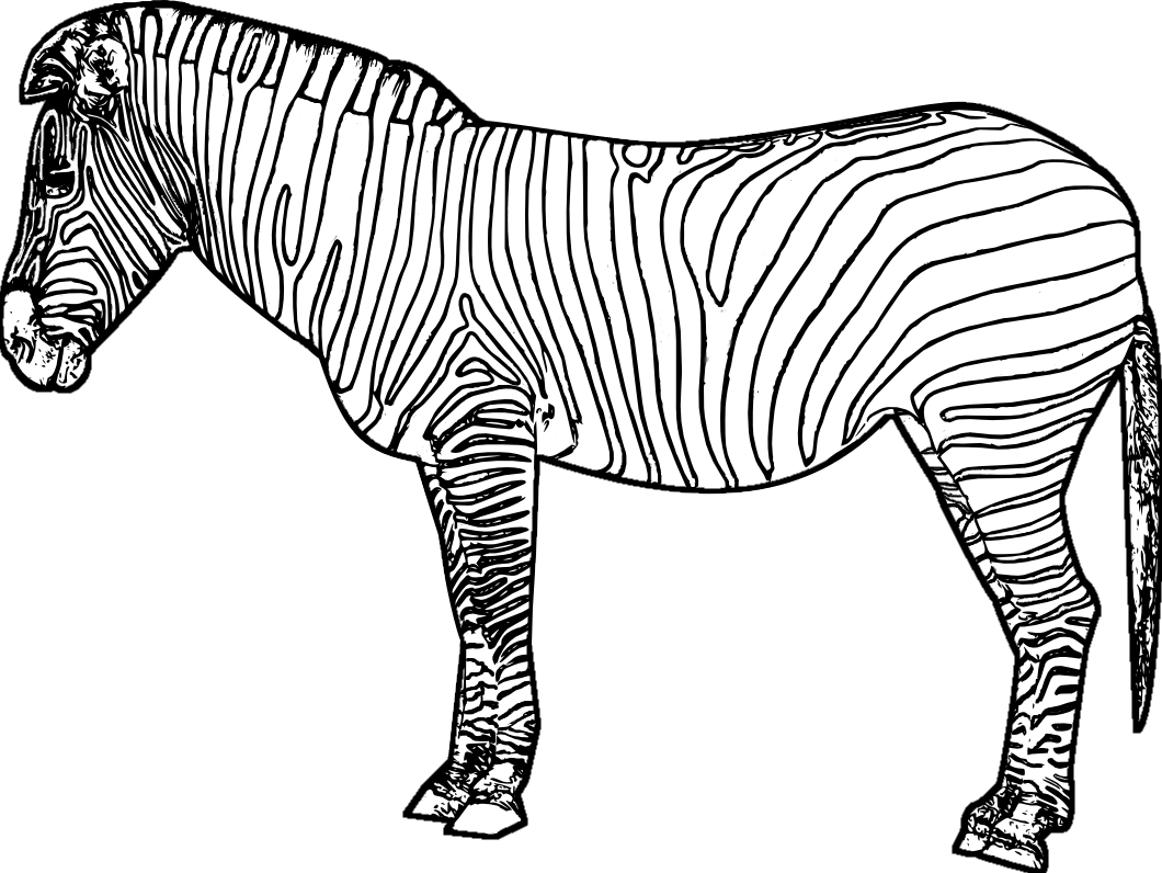 15 Kids Coloring Pages Zebra