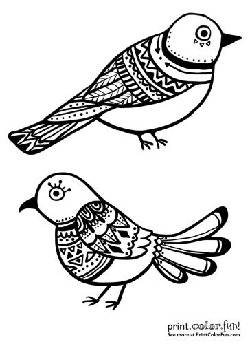 Beautiful ornamental bird designs