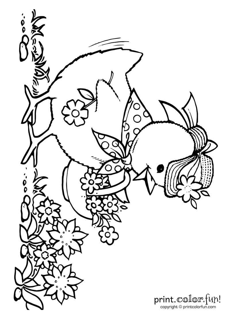 Cute little chick coloring page Print Color Fun