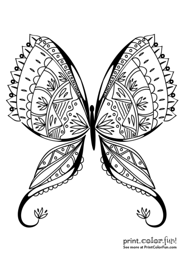 Exotic butterfly coloring page coloring page - Print. Color. Fun!