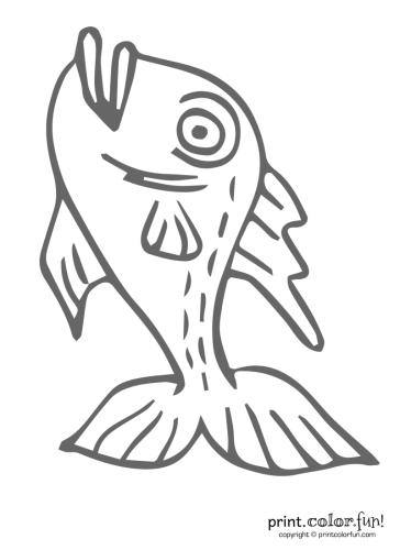Funny-fish-3