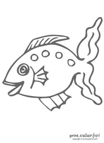 Funny-fish-6