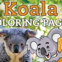 10 free cute Koala coloring pages