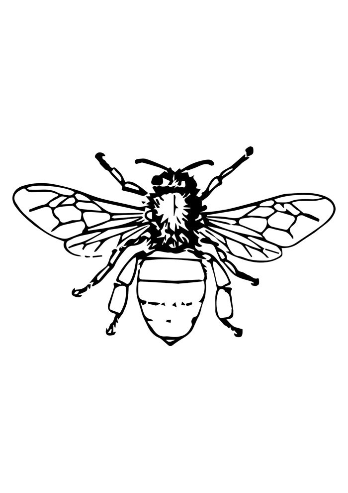 41 Bee Coloring Pages Coloring Pages