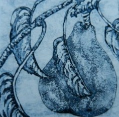 Elizabeth Kelleher, Pear Drop, Etching and aquatint, 2012