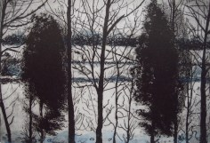 Heather Foster, Winter Trees, Etching, 2000